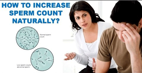 How to produce more sperm? How to ejaculate more volume?