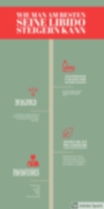 Infographic Libido steigern.png
