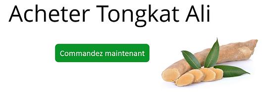Tongkat Banner  FR hor.PNG