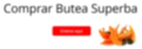 Banner Butea Superba ES hor.PNG