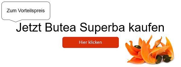 Butea Superba Banner Vorteilspreis.PNG