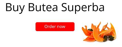 Buy Butea Superba banner EN.PNG
