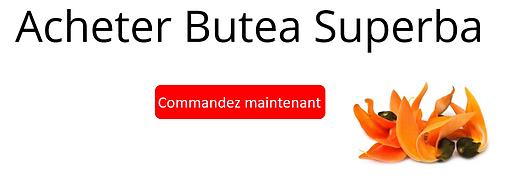 Banner Butea FR hor.PNG