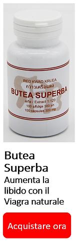 Butea Superba IT vert banner.PNG