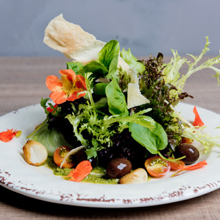 Salada Vitta