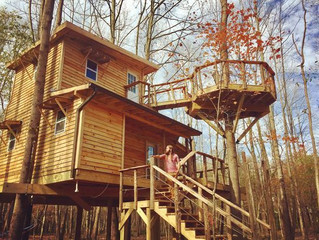 Northside tree house builder to be on Animal Planet
