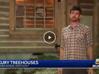 Cincinnati man takes treehouses to the next level