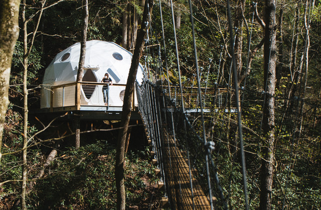 Canopy Crew Dome Town