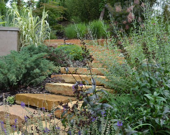 A landscape with lots of good energy will respond well by flourishing, Hyde Park landscape by Flourish.