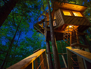 Custom Tree Houses for the High Life
