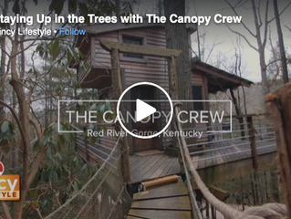 Staying Up in the Trees with The Canopy Crew