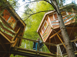 The Looking Glass Treehouse Is The Newest Way To Experience The Beauty Of Red River Gorge In Kentuck