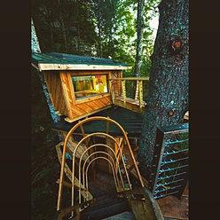TREE HOUSE RENTALS