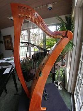 """""""Holly"""" Celtic Harp Obituary"""