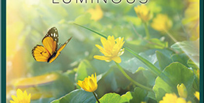 """""""Simply Luminous"""" CD"""