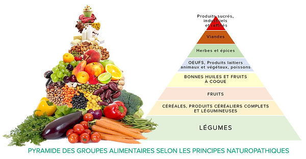 reequilibrage-alimentaire-naturopathique