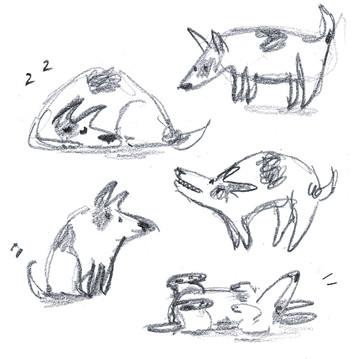 כלבלבים.jpg