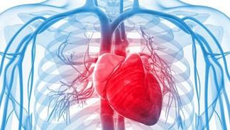It's Official: NIH Says Chelation Reduces Heart Disease