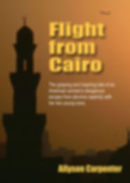 Flight From Cairo.jpg