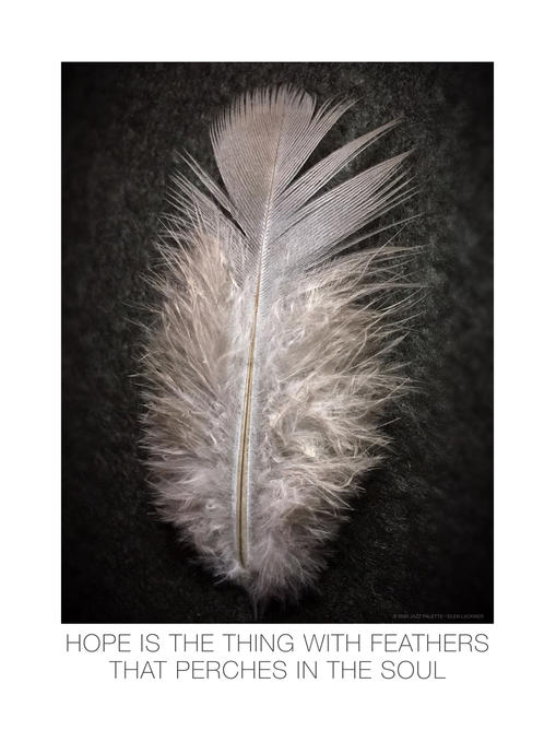 HOPE IS THE THING WITH FEATHERS…