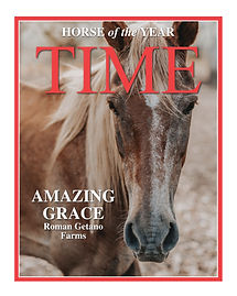 Amazing Grace, Horse of the Year-Layout