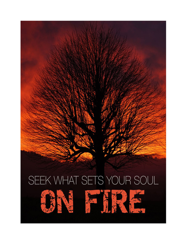 Seek what sets your soul on fire