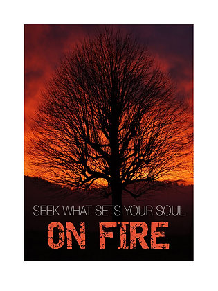 (Framed) Seek what sets your soul on fire