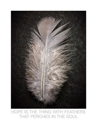(Framed) Hope is the thing with feathers . . .