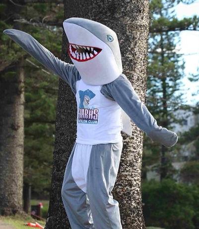 shark_edited.jpg