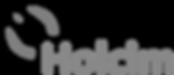 Holcim Logo_edited.png