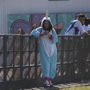Lollapalooza ya tiene fecha de reprogramación en Argentina