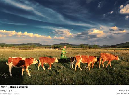 Международная фотовыставка «Наш шелковый путь». 3 часть