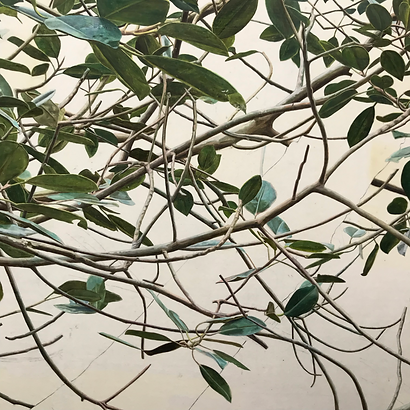 Realistic painting of leaves and branches