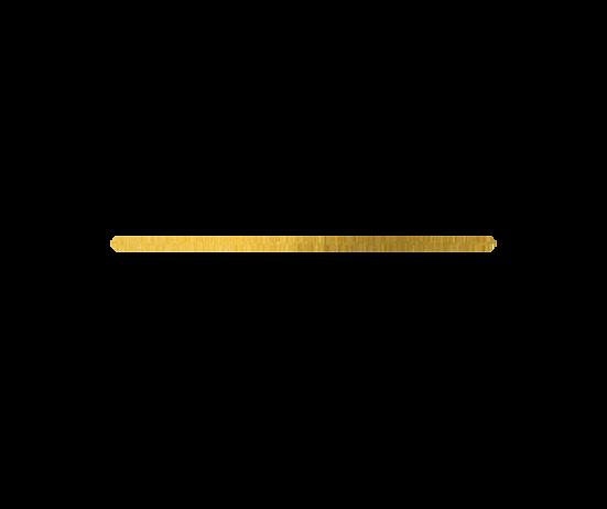 gold line ellie.png