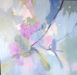 Banksia oil on canvas 70x70cm  $750.jpg