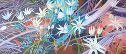 Flannel flowers oil on canvas 107x46 $800
