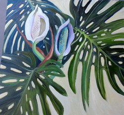 monstera oil on canvas 70x70cm $750.jpg