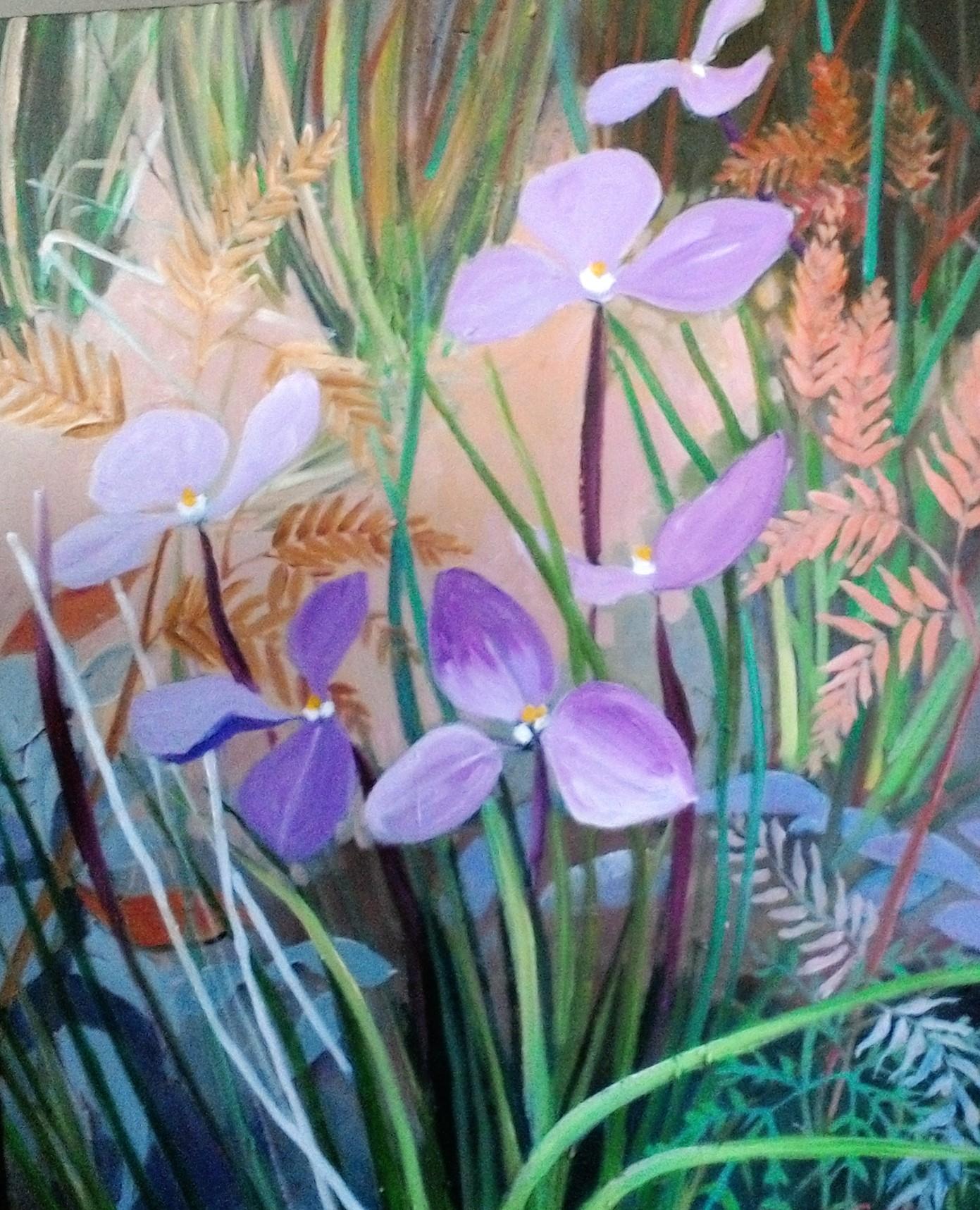 Flag Iris oil on canvas 51x61cm $400
