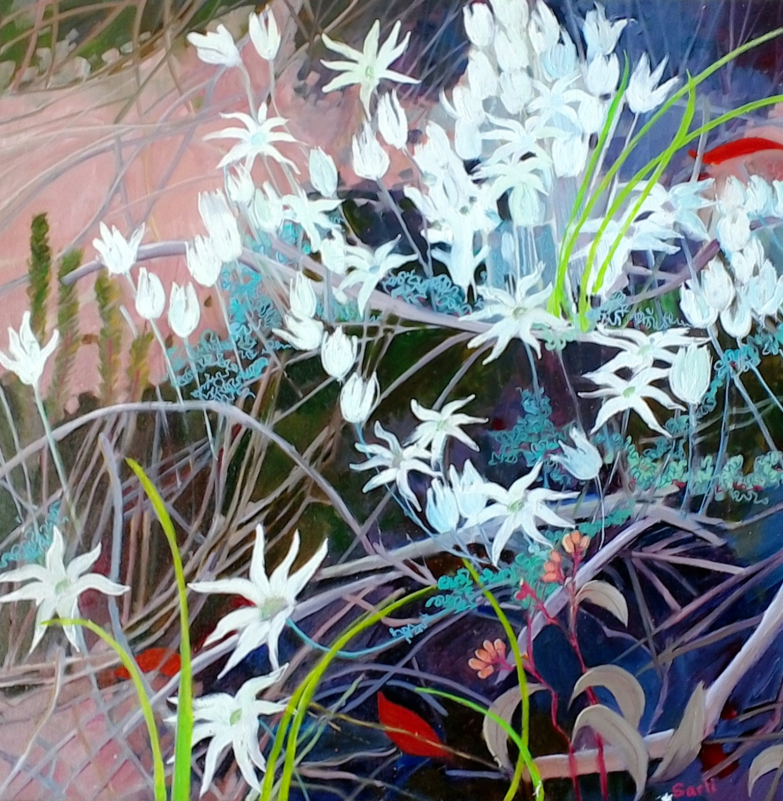 Flannel Flowers (oil on canvas 67x67cm ) $700