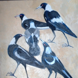 Magpies (oil on canvas 70x70cm) $500