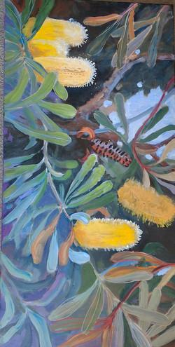Banksia 2 oil on canvas 71x36cm