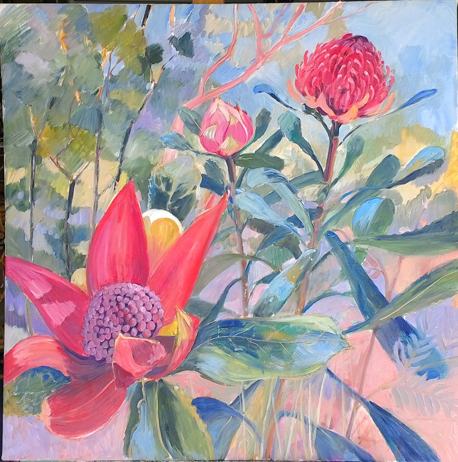 Waratah Patonga oil on canvas 70x70cm $750