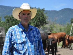 Ranching Like An Economist