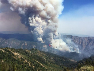 USDA help for wildfire victims