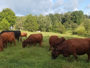 Five Ways To Make Your Farm More Profitable