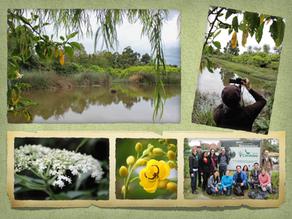 Exploring Bogotá's Urban Wetlands: Humedal de Córdoba, Sector 3