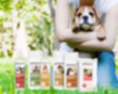 Pampered Paws Pet Care Line