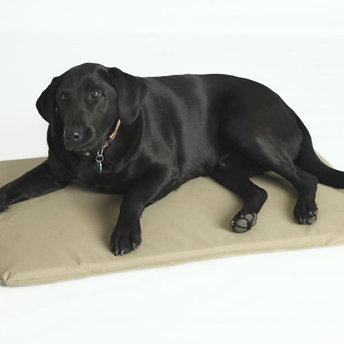 Kennel Cushion
