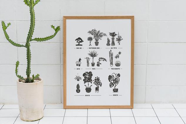 'Plant Trends'