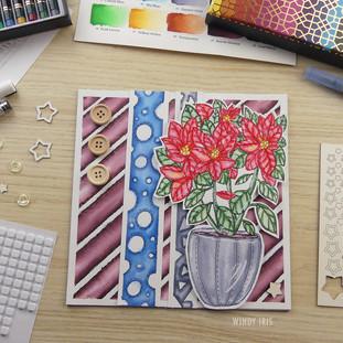 Poinsettia Illustration